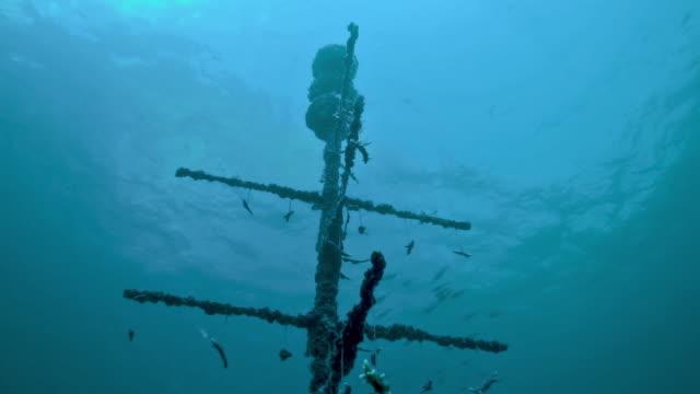 Umweltinnovation Unterwasserschutzprojekt künstliches Korallenriff – Video