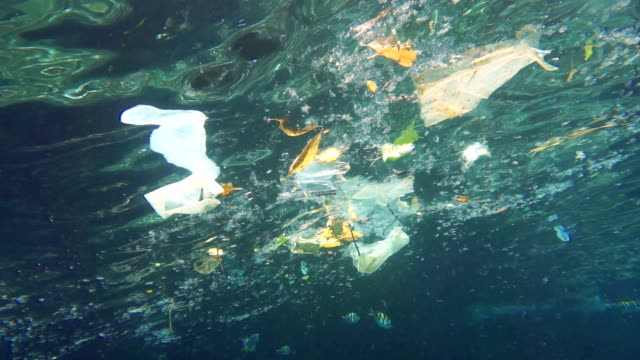 environmental issue: plastic in the ocean - plastic stock videos and b-roll footage