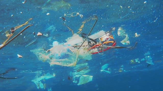 environmental issue underwater plastic in the ocean - plastic stock videos and b-roll footage