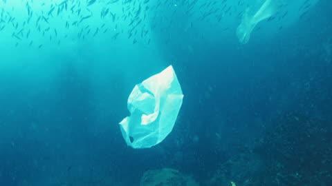 vídeos de stock e filmes b-roll de environmental issues single use plastic in the ocean - mar