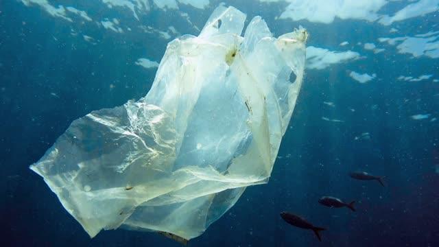 miljömässiga problem enda använda plast i havet - plastic ocean bildbanksvideor och videomaterial från bakom kulisserna