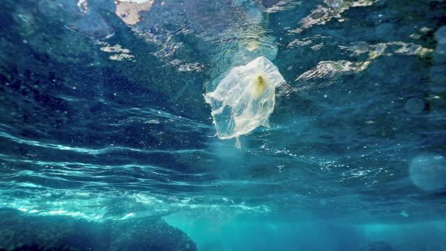 環境問題海洋におけるプラスチックの単独使用 - 海洋生物点の映像素材/bロール