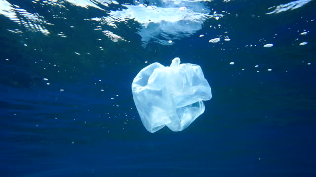 stockvideo's en b-roll-footage met milieukwesties: single use plastic in de oceaan - boodschappentas tas