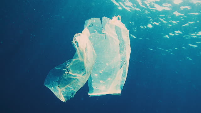 environmental issues single use plastic in the ocean - plastic stock videos and b-roll footage