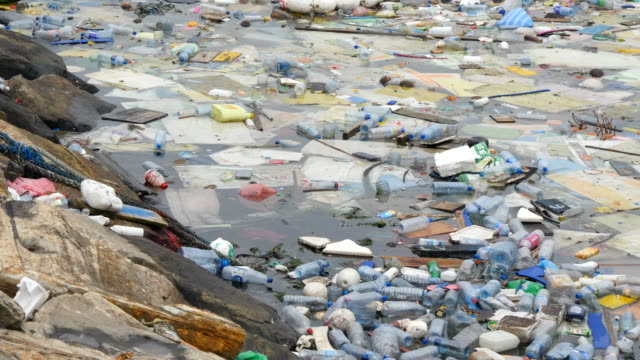 Environmental pollution. Plastic bottles, bags, trash in river or lake. Rubbish and pollution floating in water surface. Close up video