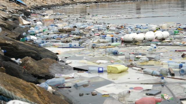 環境汚染です。プラスチック ボトル、バッグ、川または湖国立公園のゴミ箱。ゴミや汚染水に浮かんでいます。クローズ アップ - 水に浮かぶ点の映像素材/bロール