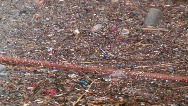 環境汚染 - 水に浮かぶ点の映像素材/bロール