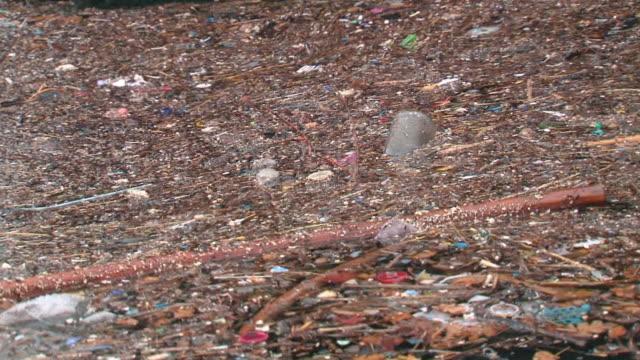 Environmental pollution video