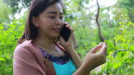 istock Environmentarist working in forest 805942384