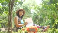 istock Environmentarist working in forest 805954984