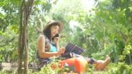 istock Environmentarist working in forest 805970786