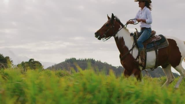 epic cowgirl horseback riding - stallone video stock e b–roll