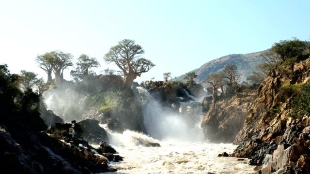 epupa wasserfälle am kunene fluss in namibia - affenbrotbaum stock-videos und b-roll-filmmaterial