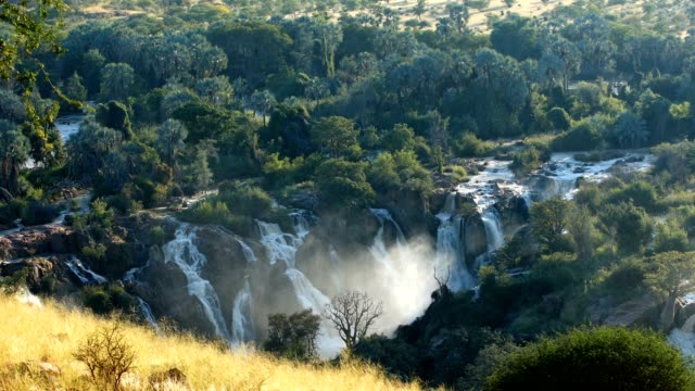 Epupa Falls on the Kunene River in Namibia famous Epupa Falls on the Kunene River in Northern Namibia and Southern Angola border. Sunrise sunlight in water mist. This is africa. Beautiful landscape. baobab tree stock videos & royalty-free footage