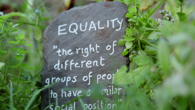 Equality Definition of equality written on a slate in a natural setting amongst grass with a light breeze. Static shot. morality stock videos & royalty-free footage