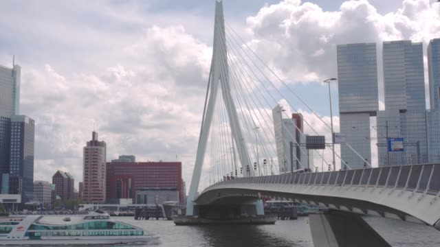 Erasmus Bridge cityscape in Rotterdam, Holland, Netherlands with pleasure boat crossing underneath it on the Nieuwe Maas river on a sunny day Erasmus Bridge cityscape in Rotterdam, Holland, Netherlands with pleasure boat crossing underneath it on the Nieuwe Maas river on a sunny day dutch architecture stock videos & royalty-free footage