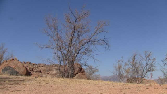 岩と乾いた茂みとエロンゴ・ムーテインの風景 - 乾燥点の映像素材/bロール