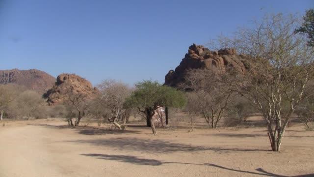 ナミビアの砂、岩、木々のエロンゴ・ムーテイン風景 - 乾燥点の映像素材/bロール