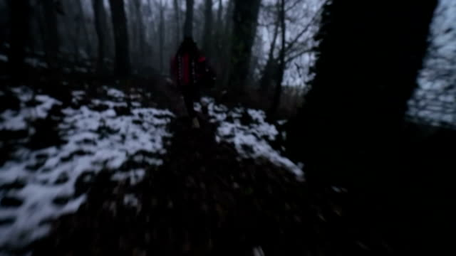 Escaping in the dark forest video