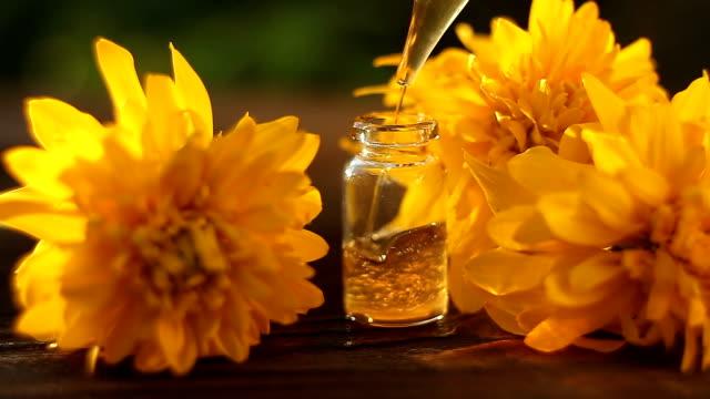 Essence of coneflowers flowers on table in beautiful glass Bottle