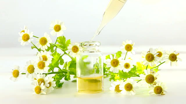 vídeos y material grabado en eventos de stock de esencia de flores sobre la mesa en hermosa botella de vidrio - manzanilla