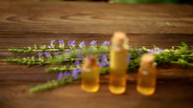 vídeos de stock, filmes e b-roll de óleo essencial na mesa em linda garrafa com flores - aromaterapia