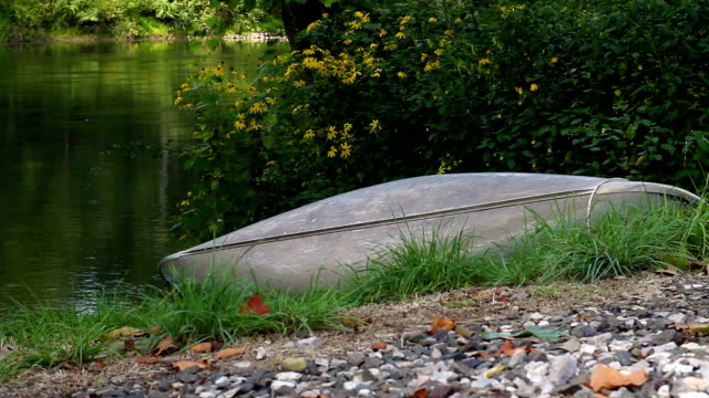 establishing shot of boat or canoe near the edge of a river in summer - joseph kelly stock videos and b-roll footage