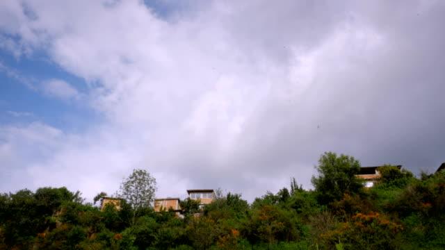 Establishing shot of houses on the hillside with birds flying in the sky