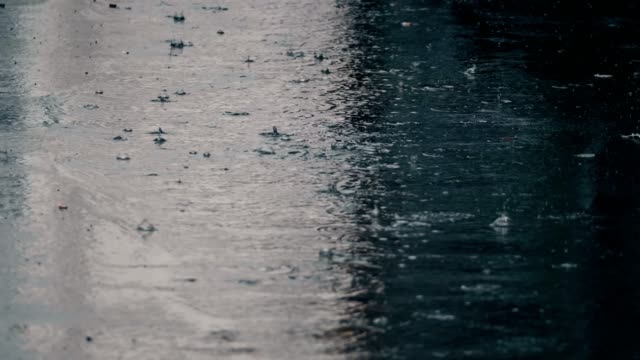 4K establishing shot of rain falling on pavement. 4K establishing shot of rain falling on pavement. Slow motion. rain stock videos & royalty-free footage