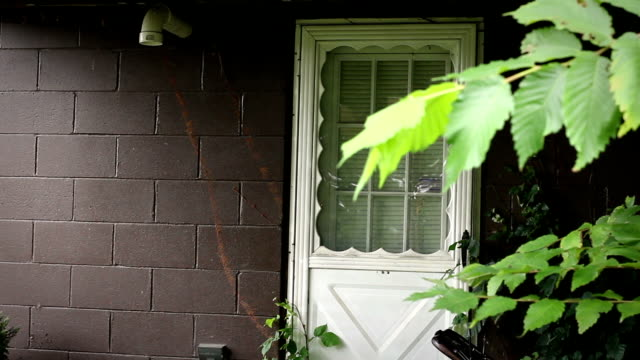 Establishing shot of the backdoor of an unkept suburban home video