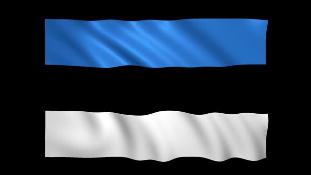 stockvideo's en b-roll-footage met estland vlag loopable mat inbegrepen-stock video - estland