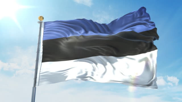 Estonia flag waving in the wind against deep blue sky. National theme, international concept. 3D Render Seamless Loop 4K Estonia flag waving in the wind against deep blue sky. National theme, international concept. 3D Render Seamless Loop 4K allegory painting stock videos & royalty-free footage