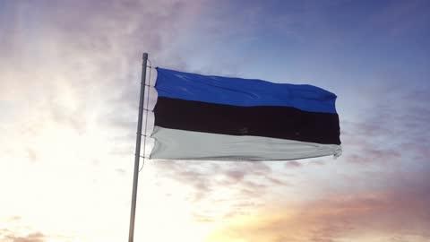 Estonia flag waving in the wind, dramatic sky background. 4K Estonia flag waving in the wind, dramatic sky background. 4K. estonia stock videos & royalty-free footage