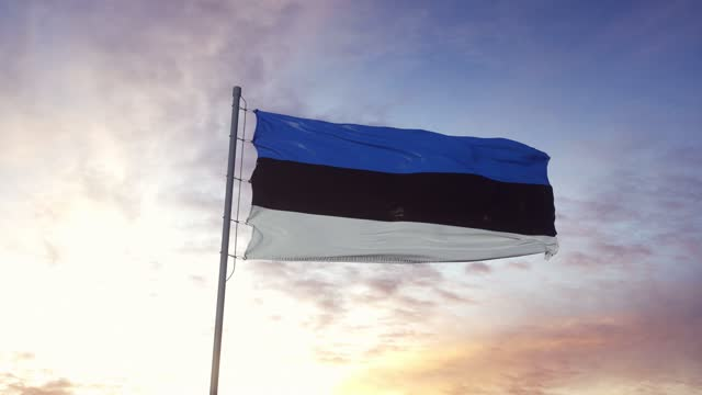 vídeos de stock e filmes b-roll de estonia flag waving in the wind, dramatic sky background. 4k - estónia