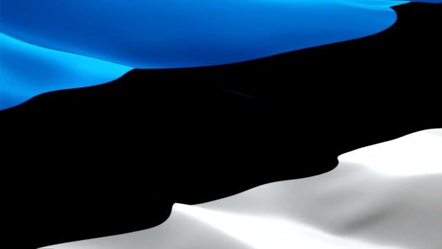 estonian flag closeup 1080p full hd 1920x1080 footage video waving in wind. national 3d estonian flag waving. sign of estonia seamless loop animation. estonian flag hd resolution background 1080p - kiss стоковые видео и кадры b-roll