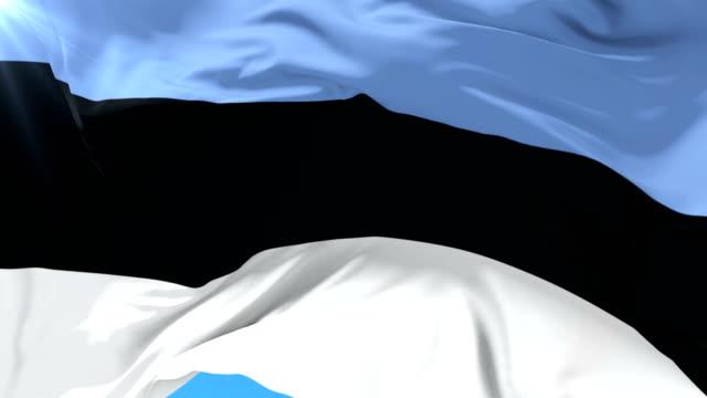 estonian flag waving at wind with blue sky in slow, loop - estonia video stock e b–roll