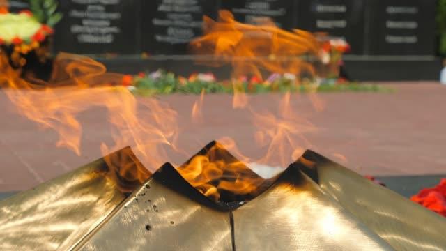 vídeos de stock e filmes b-roll de eternal fire. flowers - maio