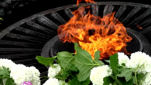 "vídeos de stock e filmes b-roll de ""eternal flame"", no memorial para baixar os defesas motherland - maio"