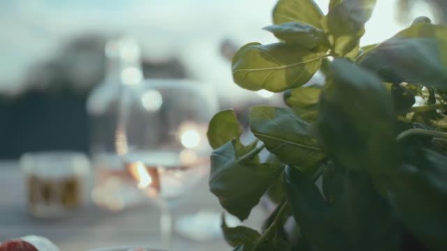 europeisk stil picknick ute i solen - basilika ört bildbanksvideor och videomaterial från bakom kulisserna