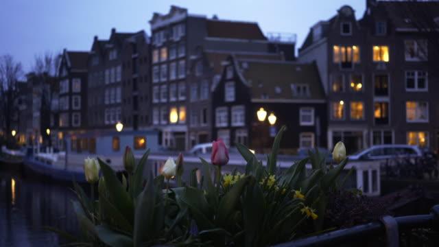kvällen stadsbilden - tulpan bildbanksvideor och videomaterial från bakom kulisserna