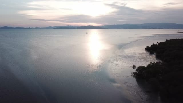 evening of seascape view mangrove forest. - юго восток стоковые видео и кадры b-roll