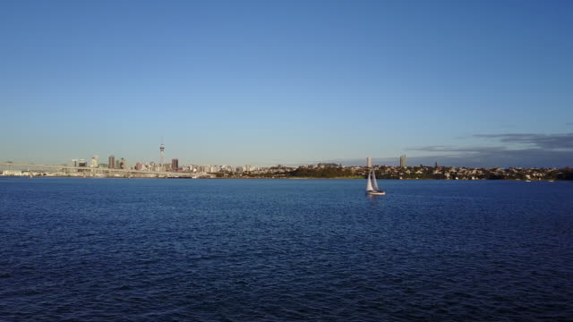 Evening sailing in Auckland, New Zealand video