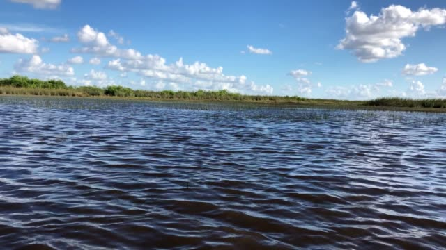 Everglades By Boat