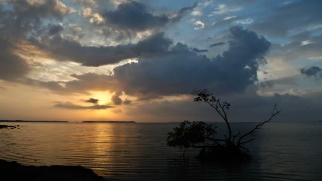 Everglades National Park Timelapse video