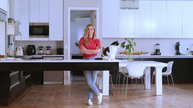 vídeos de stock, filmes e b-roll de o quarto favorito de todos na casa, incluindo gatinho - felino