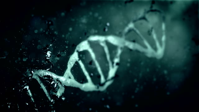 4k evolution dna - stock video - alternative medizin stock-videos und b-roll-filmmaterial