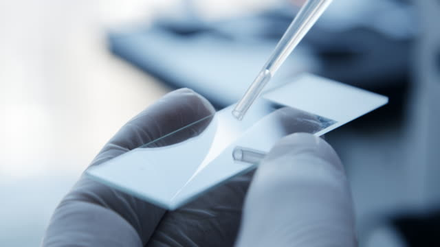 vídeos de stock, filmes e b-roll de análise da amostra de teste ao microscópio no laboratório. - biotecnologia