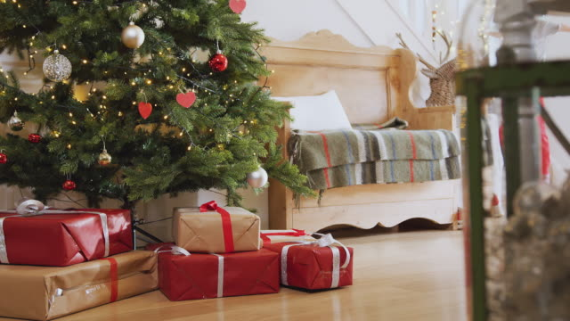 stockvideo's en b-roll-footage met opgewonden jongen schudden en openen presenteert door boom op kerst ochtend - christmas tree