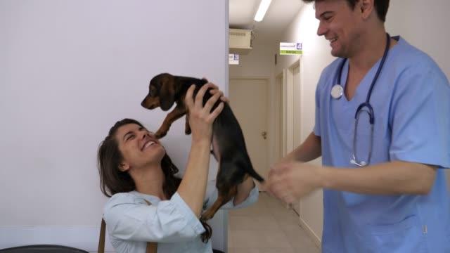 upphetsad kvinnliga sällskapsdjur ägare som fick hennes valp efter veterinären kollade honom ser väldigt glad - veterinär, undersökning bildbanksvideor och videomaterial från bakom kulisserna