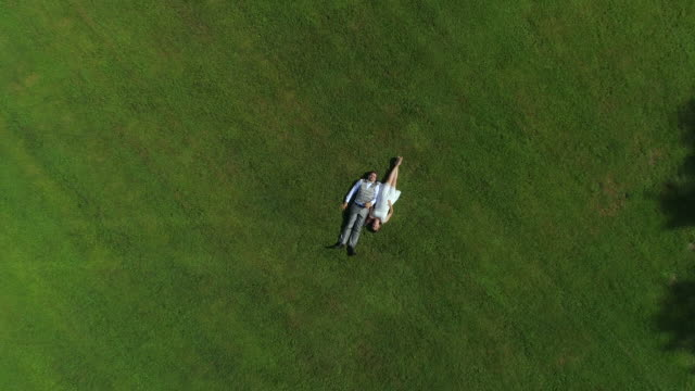 AERIAL TOP DOWN: Excited pregnant couple in love lying on grass holding hands video
